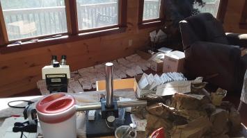 georgia lichen lab1